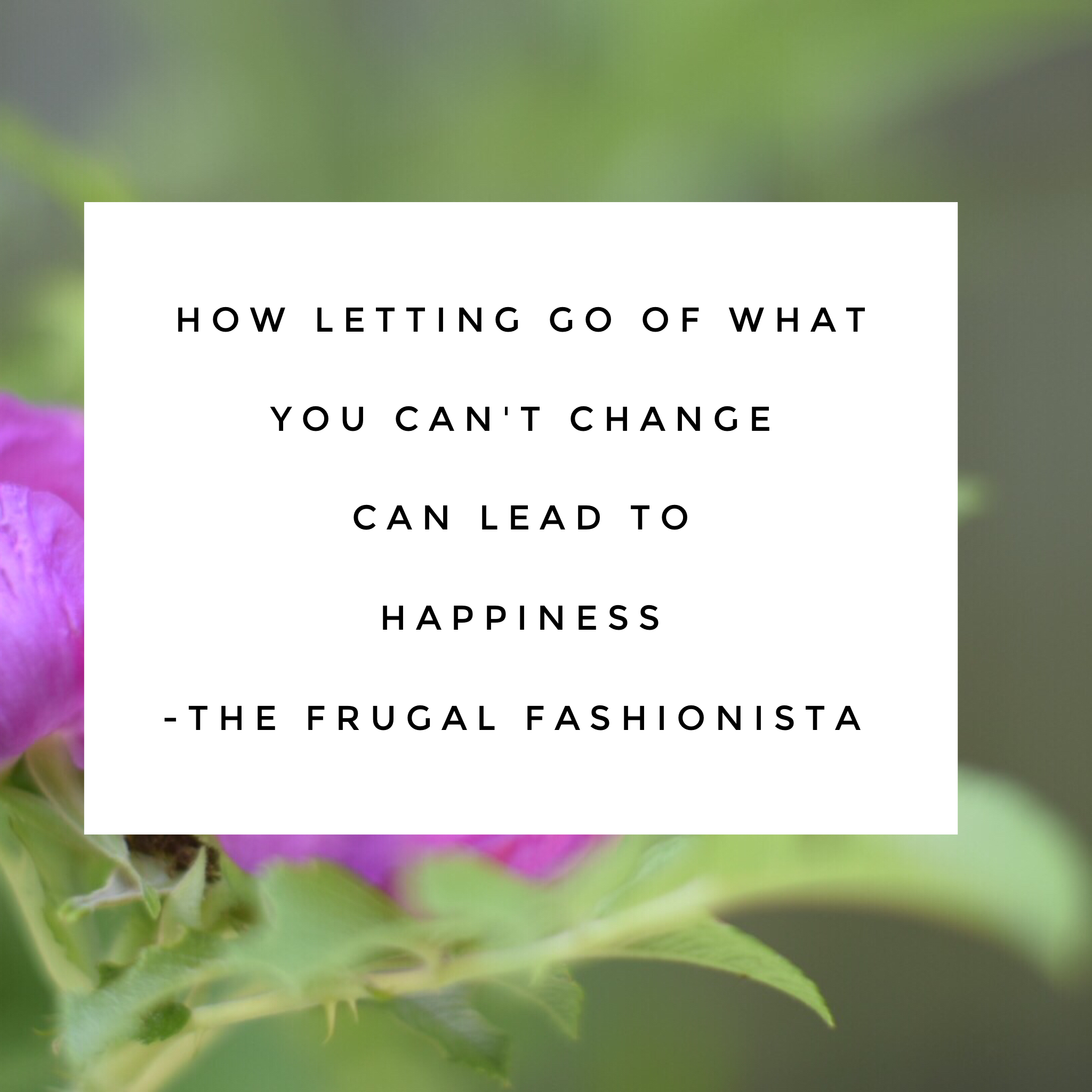 The Frugal Fashionista: How Letting Go of What You Cannot Change Can Lead to Happiness