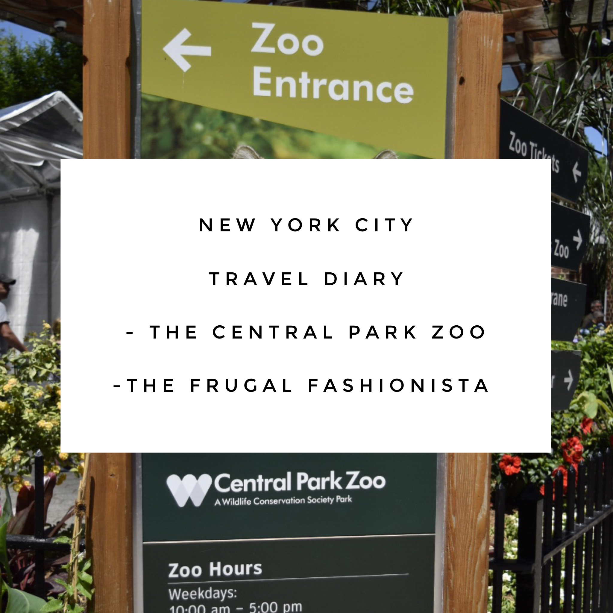 The Frugal Fashionista: New York Travel Diary - The Central Park Zoo